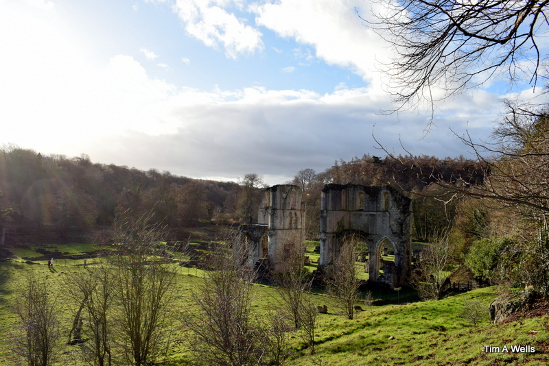 Roche abbey Christmas day